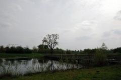 Fietsexcursie-Aarle-Rixtel-12-april-2014-161